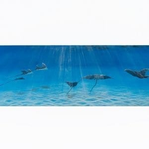 Manta rays in blue water acrylic painting